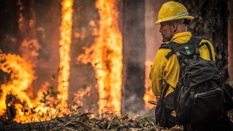 Жителей Канады эвакуируют из-за сильных лесных пожаров