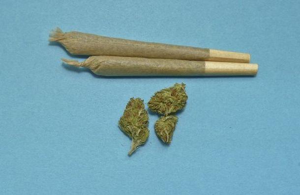 Госдума может смягчить наказание захранение наркотиков без цели сбыта