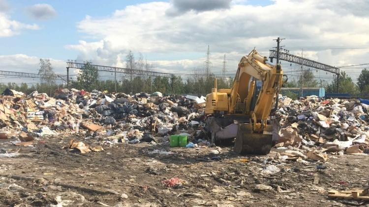 Наработки Подмосковья по утилизации мусора оказались лучшими в России