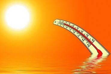 Синоптики зафиксировали абсолютный температурный рекорд вПетербурге