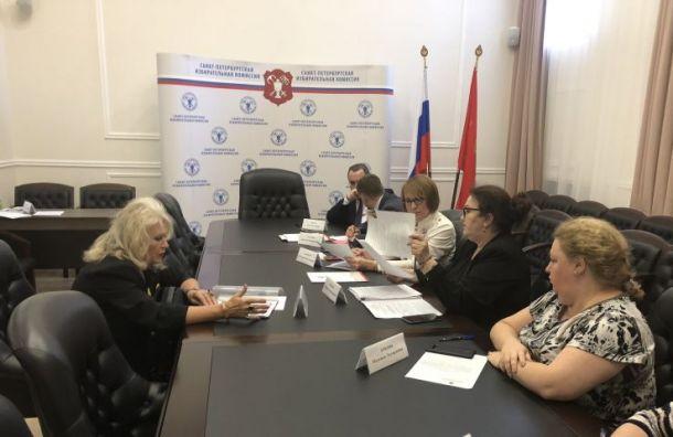 Горизбирком зарегистрировал 23-го кандидата вгубернаторы Петербурга