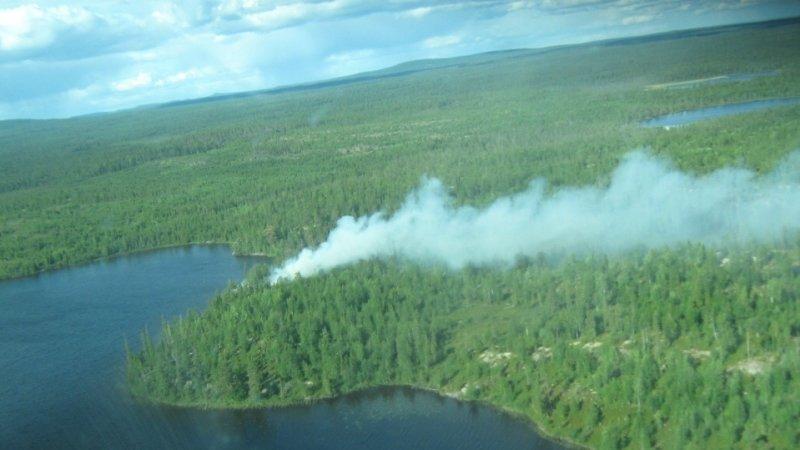 Лесные пожары в Иркутской области распространились на 217 тысяч гектаров
