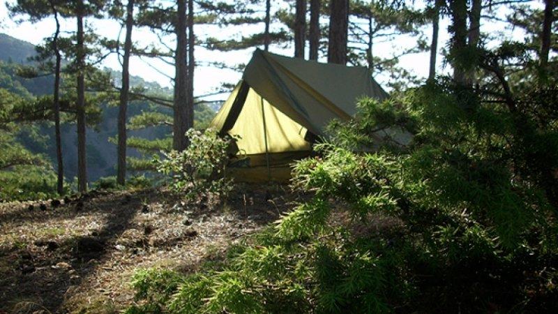 Ребенок погиб при пожаре в палаточном лагере в Хабаровском крае
