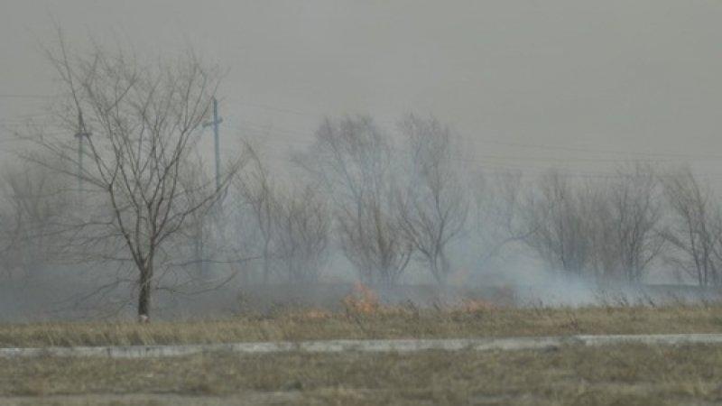 Крупный лесной пожар возник на западе Москвы