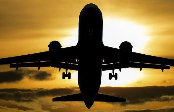 Летевший в Париж самолет сел вПулково