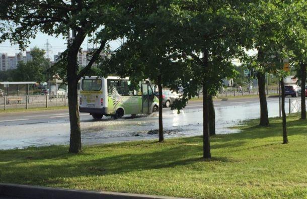 Пешеходный переход наКосыгина внезапно затопило