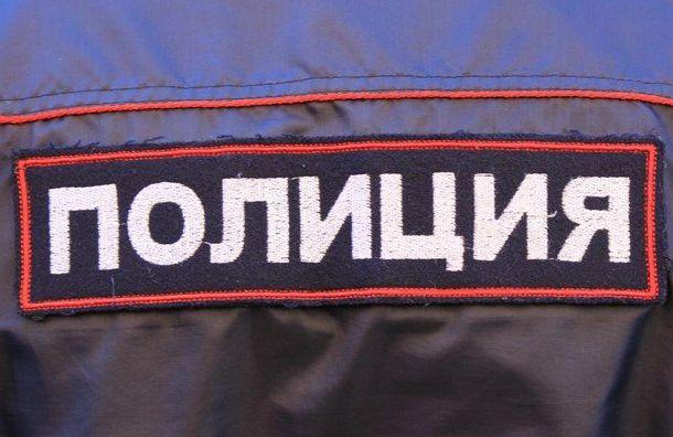 Полицейские оскорбился словами активистки отом, что унего
