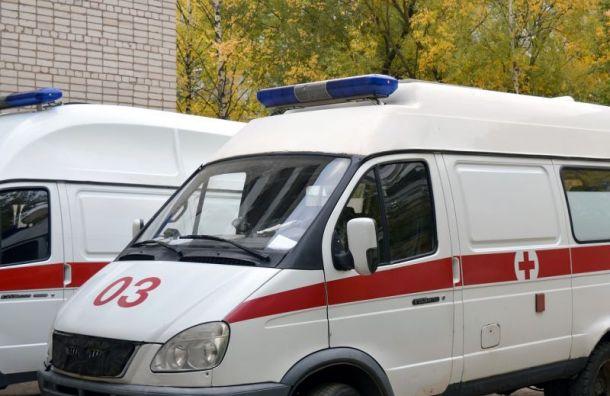 Двух женщин смладенцами сбила иномарка вЛужском районе