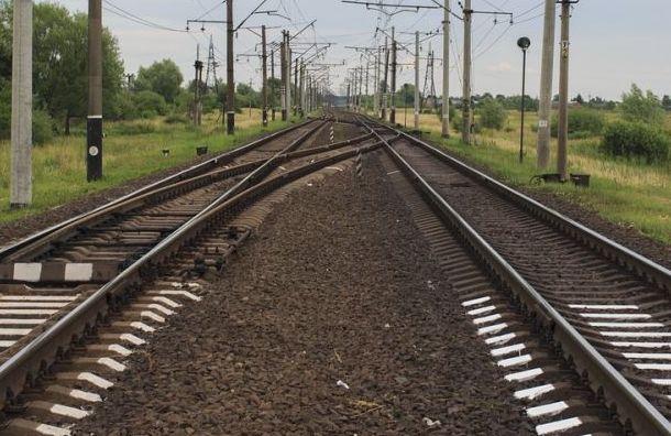 Пассажирский поезд между Петербургом иИматрой запустят всентябре