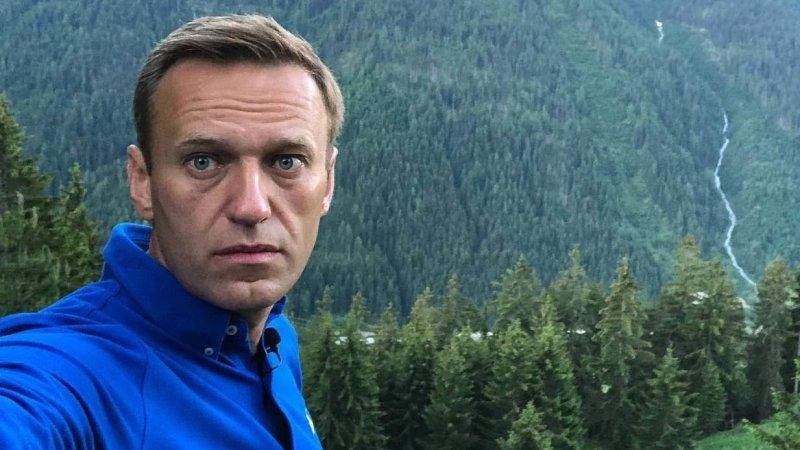 Медицинские анализы опровергли ложь Навального об отравлении после ареста