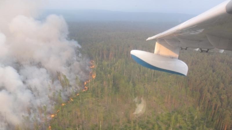 Ситуация с лесными пожарами в Сибири стабилизировалась, но остается сложной
