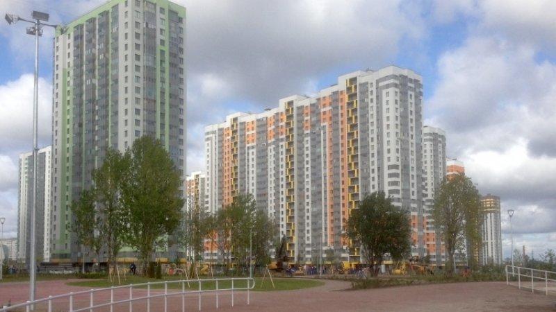 Беглов перечислил петербургские парки, которые вскоре будут благоустроены
