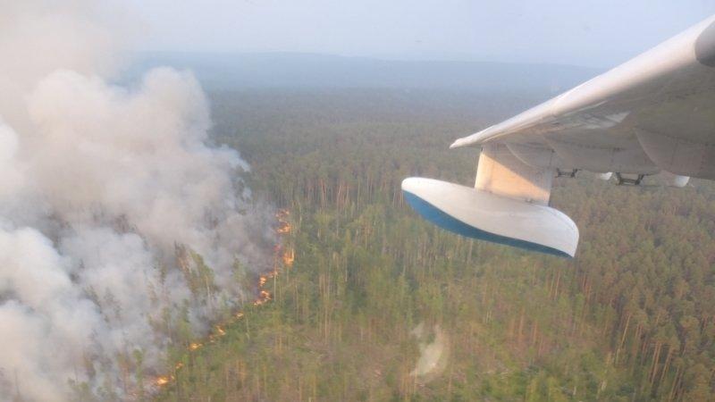 Авиалесоохрана сообщила о сокращении площади природных пожаров за сутки