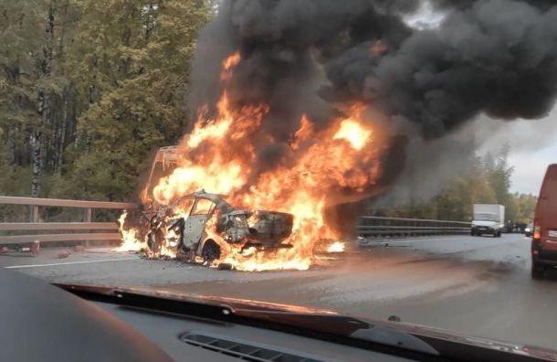 Mazda устроила огненное ДТП смаршруткой наВолхонском шоссе