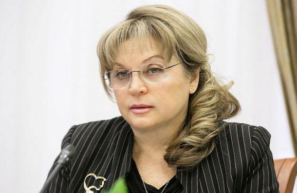 Памфилова пожаловалась Путина намуниципальные выборы вПетербурге
