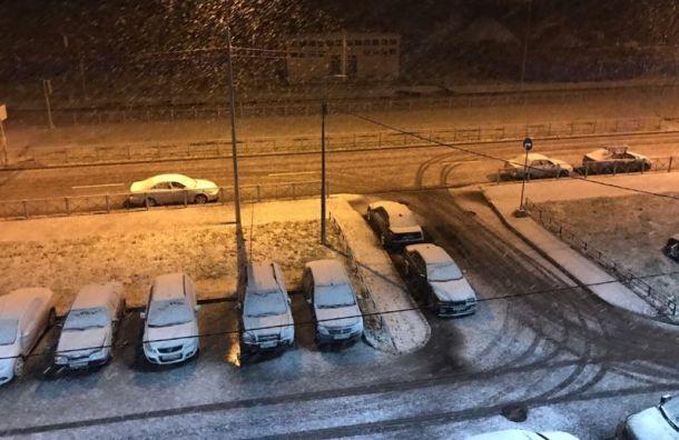 Снег выпал вПетербурге раньше прогноза синоптиков