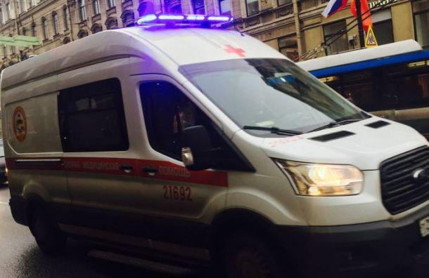 Renault сбил шестилетнего мальчика наПетрозаводском шоссе