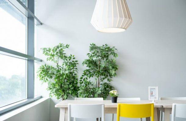 IKEA откроет ещё один магазин вПетербурге в2020 году