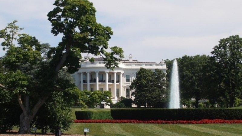 Минюст США требует данные об анониме, разоблачающем Трампа