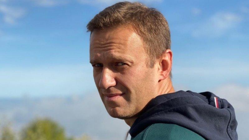 Дебиловатый адвокат разрушил легенду Навального о «пожертвованиях» ФБК