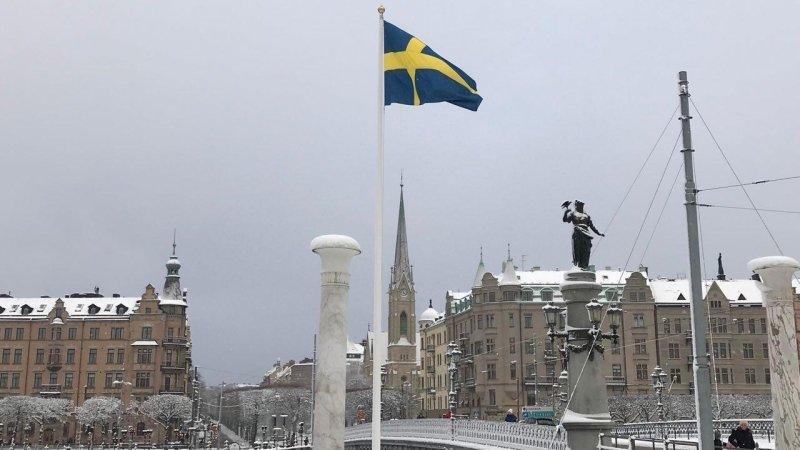 Шведское гражданство министра обороны Ирака подтвердили в Стокгольме