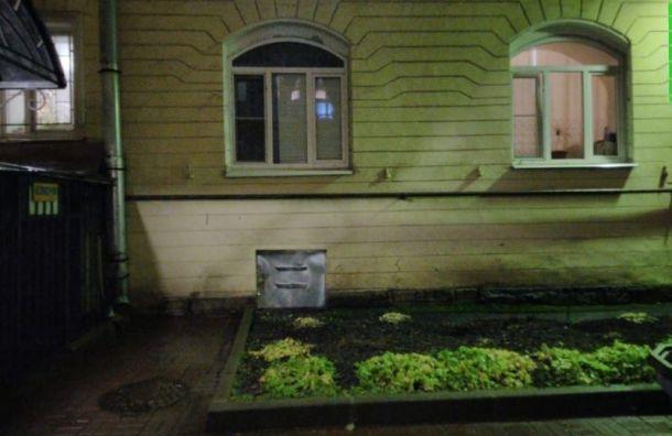 Петербуржцы пытаются спасти кошку изподвала, нопока безрезультатно