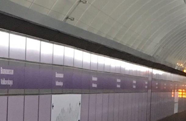 Движение поездов фиолетовой ветки метро приостанавливали начас