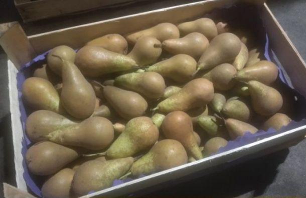Более 27 тонн польских груш уничтожили вПетербурге