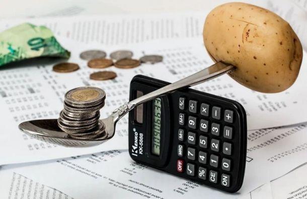 КСП проверит бюджеты поселка Шушары иокруга